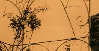 I giardini di Calvino: viaggio attraverso i luoghi botanici dell'autore